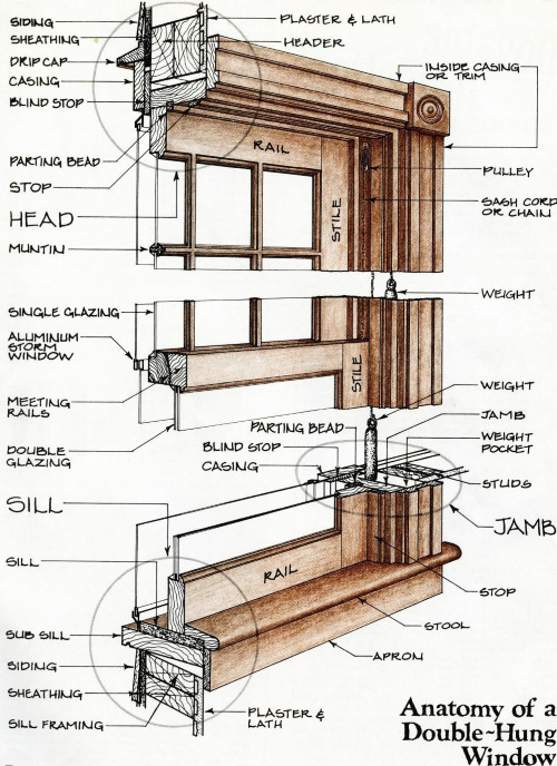 Anatomy of a window by Jonathan Poore